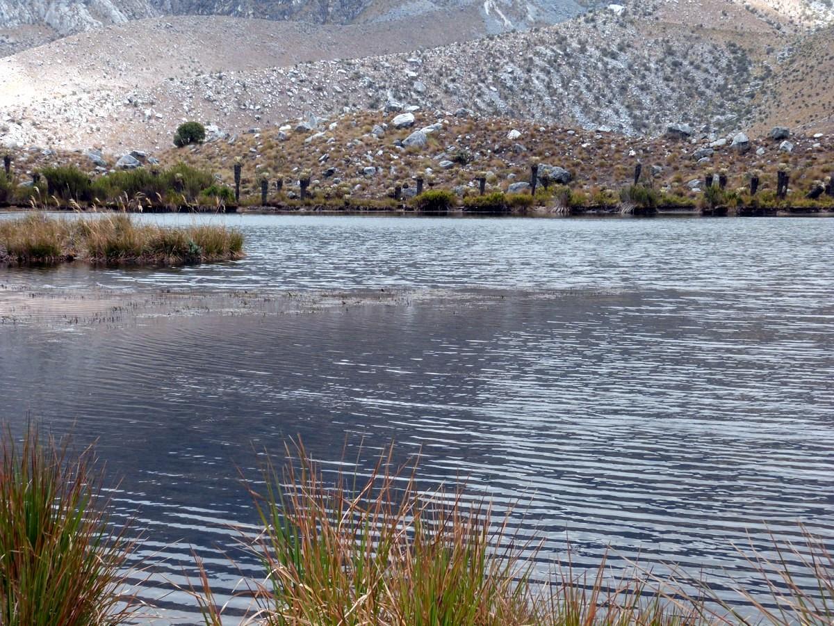 Trekking und Berge in Kolumbien - Paramos - Los Nevados - Ciudad Perdida